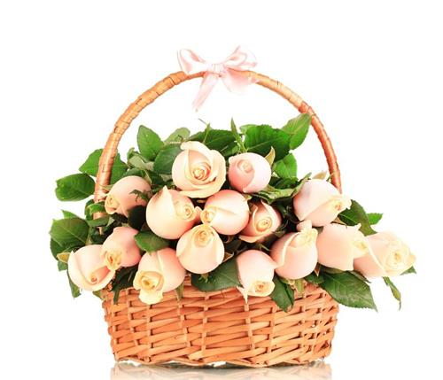 """garden basket"""